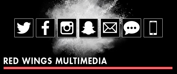 Red Wings Multimedia