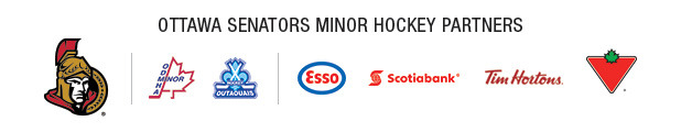 Minor Hockey Sponsor banner