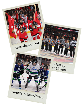 Scotiabank Skaters, Minor Hockey Referees Lineup, Timbits Intermissions